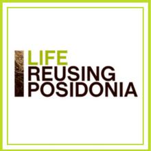 news-posidonia