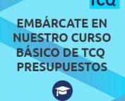 Embárcate en nuestro curso básico de TCQ Presupuestos